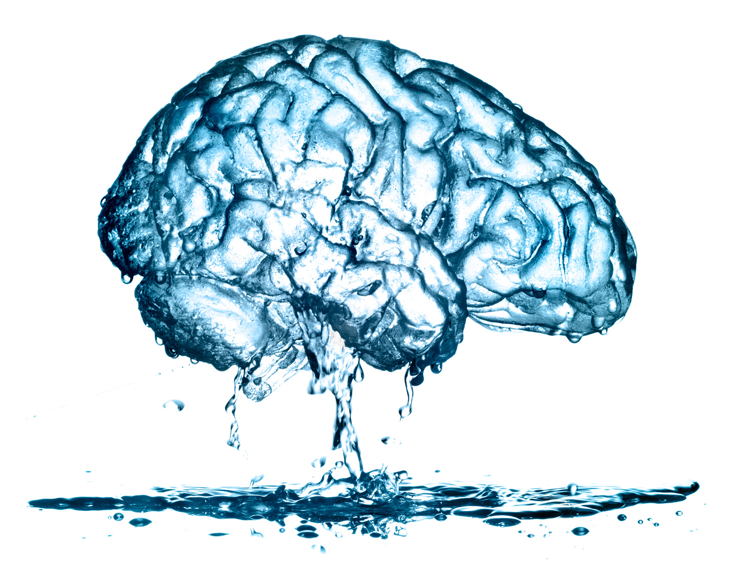 Water brain hydration dripping photo-Illustration by John Kuczala